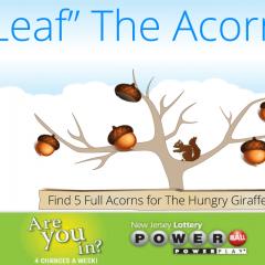 Acorns-4